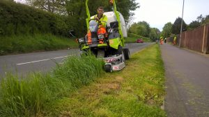 Our roadside verges – a fine balance to strike