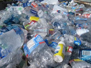 Climate Emergency panel discusses Single Use Plastic and Call for Ideas progress
